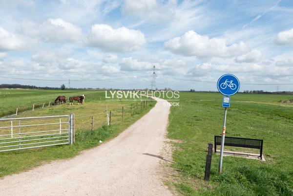 Fietspad in polderlandschap