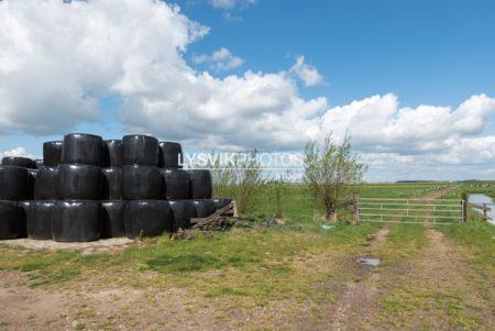 Polderlandschap met ingepakte rollen hooi tegen een bewolkte lucht in de omgeving van De Donk, Brandwijk