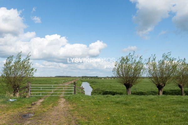 Polderlandschap met wilgen een hek en bewolkte lucht in de omgeving van De Donk, Brandwijk