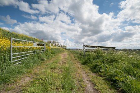 Polderlandschap met hek en bewolkte lucht in de omgeving van Streefkerk