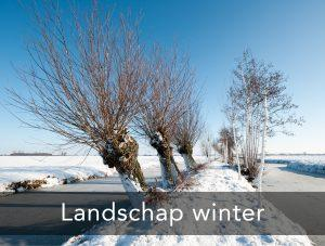 landschap-winter
