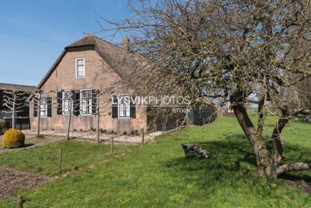 Monumentale boerderij Oosteinde 42 Wijngaarden