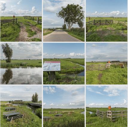 nieuwste foto's polderlandschap