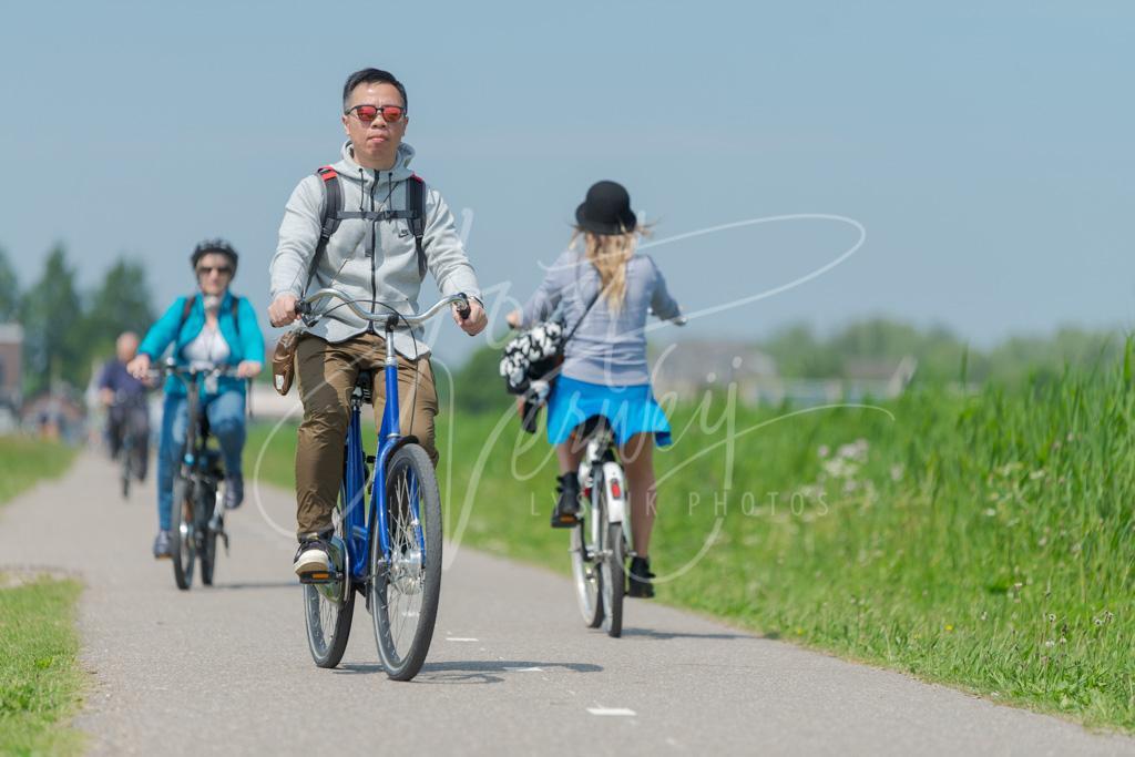 Toerist fietsen bij de Kinderdijk D8E0033091