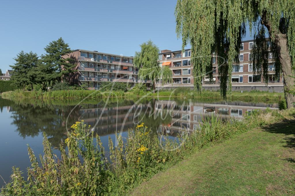 Vijver bij flatgebouwen in Papendrecht D8101763