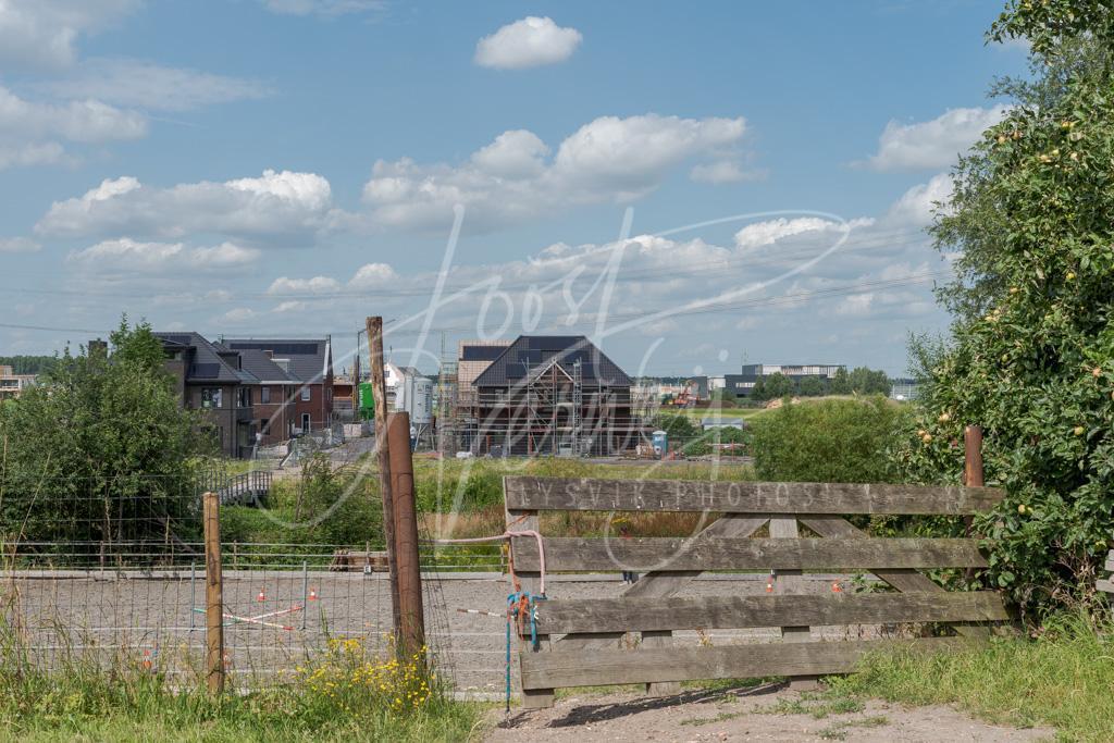 Paardenbak met op de achtergrond nieuwbouw Land van Matena  D8101889