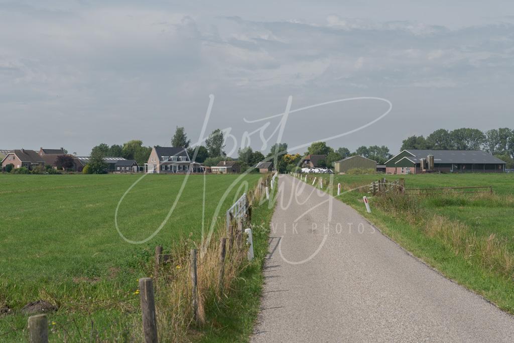Polderweg naar De Kooi D8101942