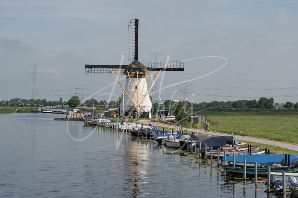 Kortlandse molen in Alblasserdam D8102135