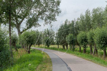 Veel groen langs het polderweggetje Minkeloos