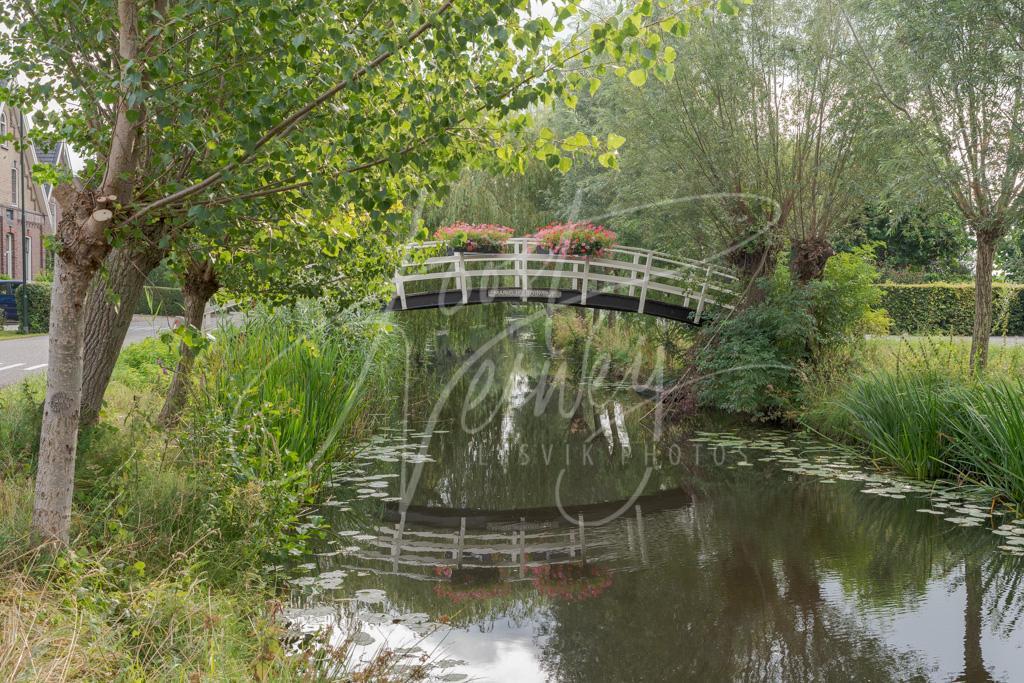 Bruggetje Marigjesboompjes in Noordeloos D8102231