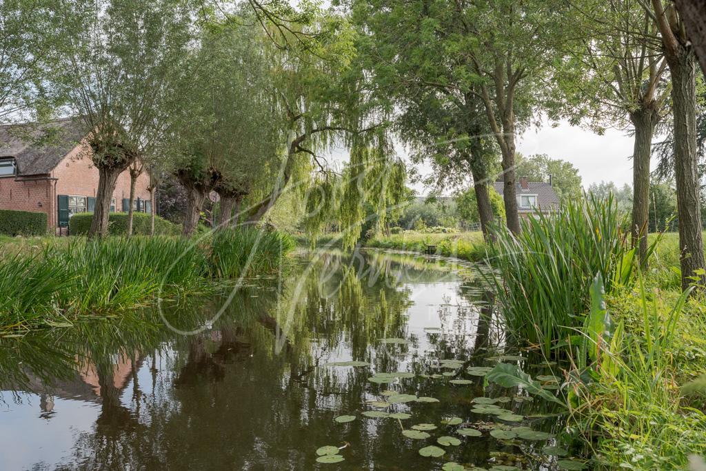 Het watertje de Noordeloos D8102241