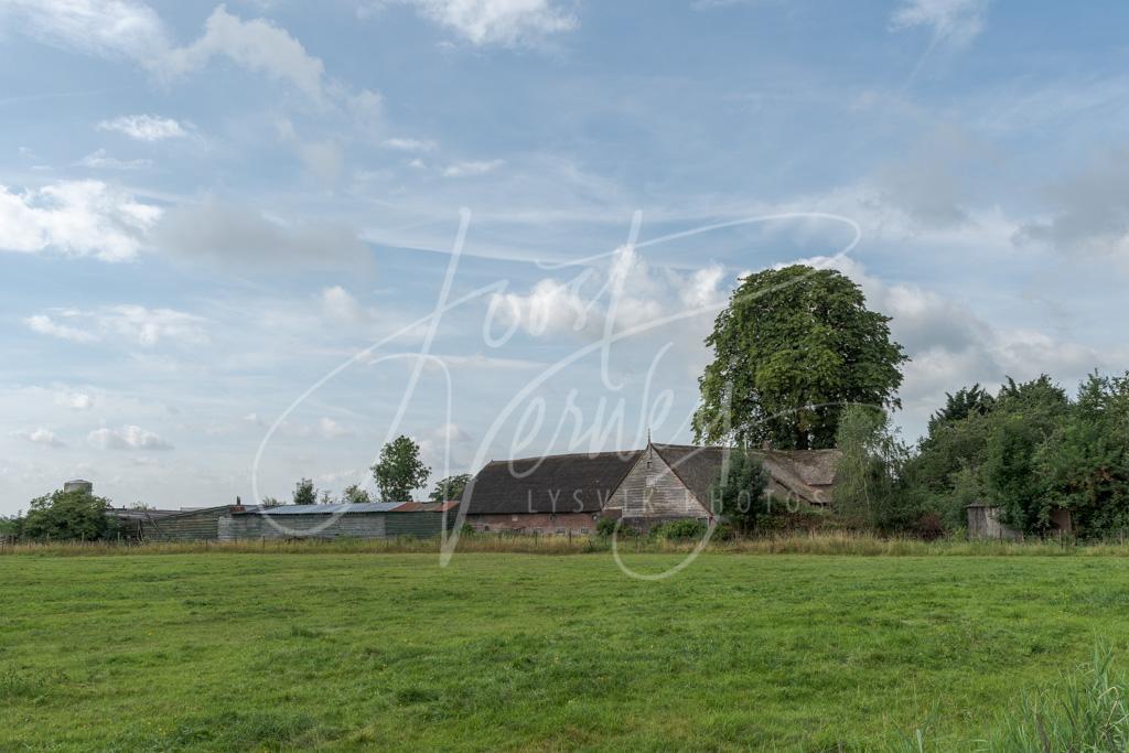 Oude boerderij in het buurtschap Den Dool D8102296