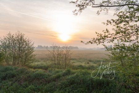 Doorkijkje bij zonsopkomst polder Achterhoven