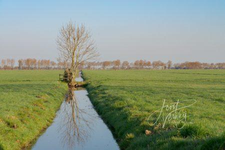 Kavelsloot in polderlandschap