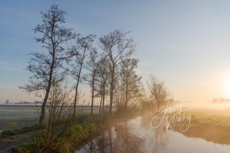 Zonsopkomst met mist in de Alblasserwaard