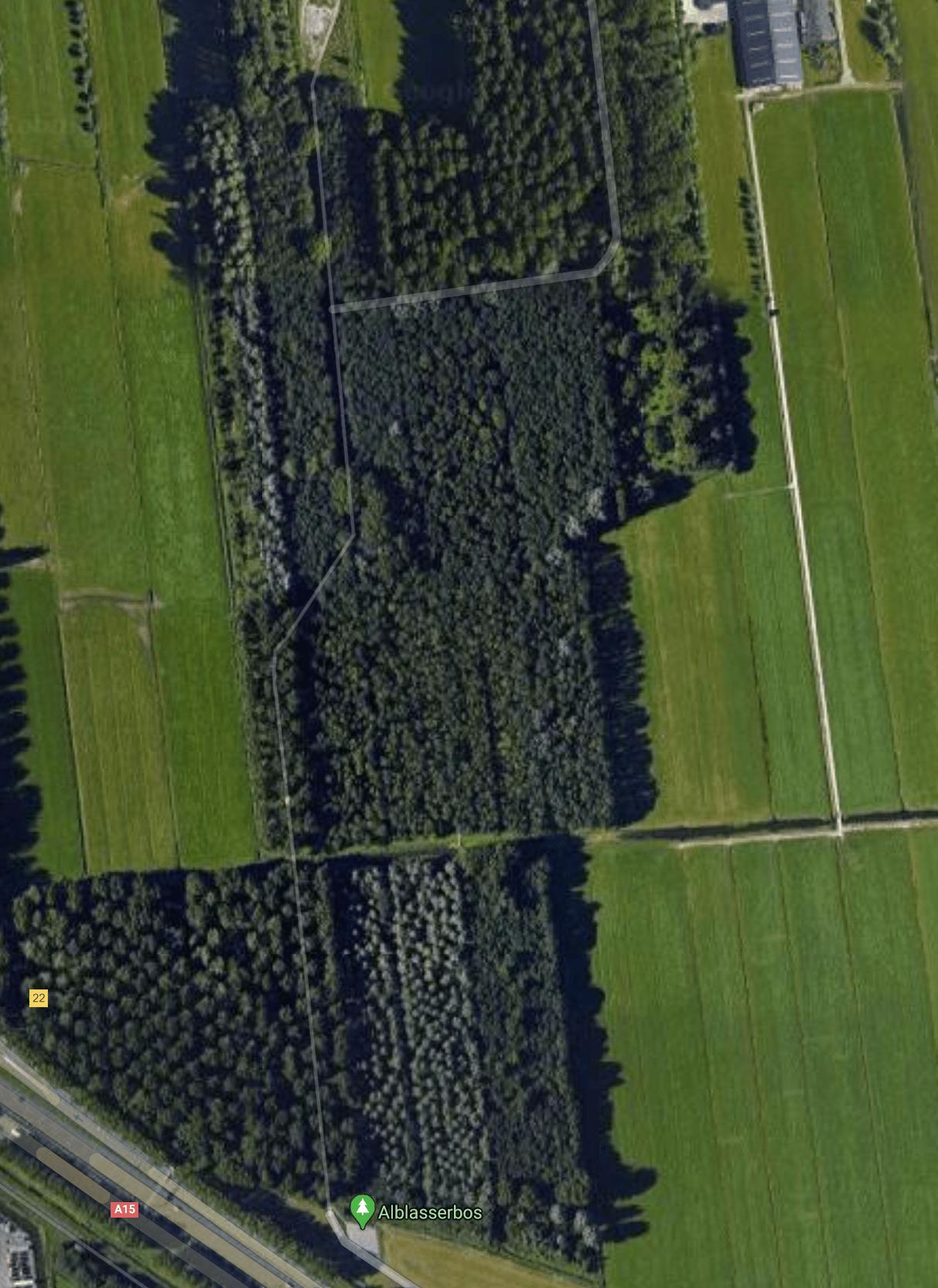 google-maps-met-nog-oude-deel-van-bos-voor-kap-elzen