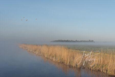Mist in stiltegebied de Donkse Laagten