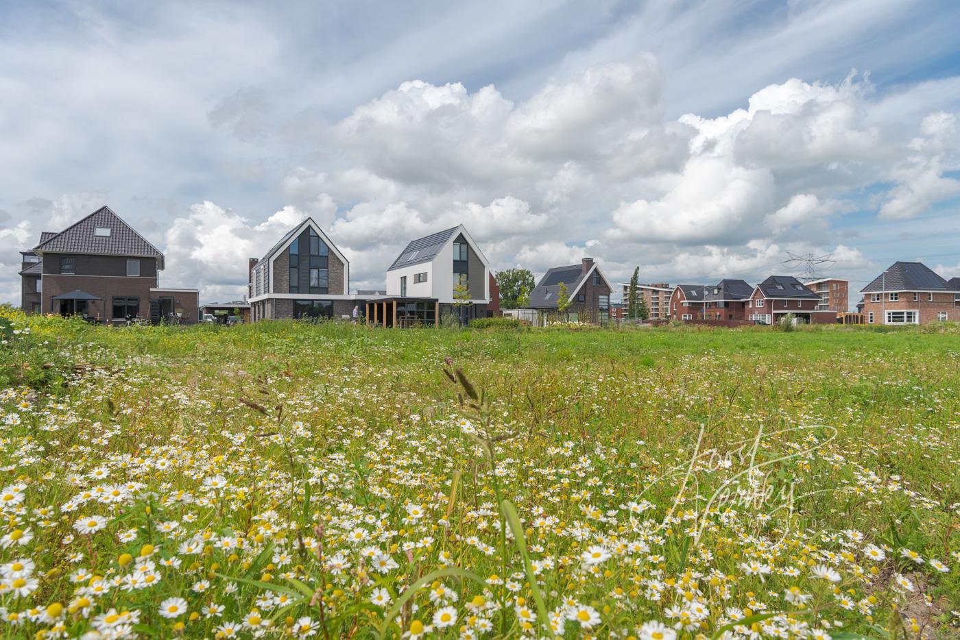 Nieuwbouw Land van Matena deelgebied Eilanden D81007917