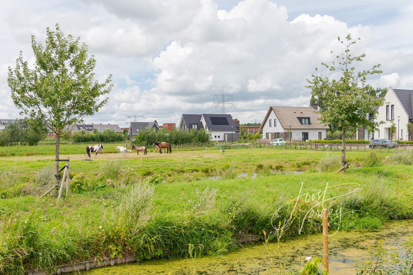 Nieuwbouw Land van Matena deelgebied Tiendzone D81007938