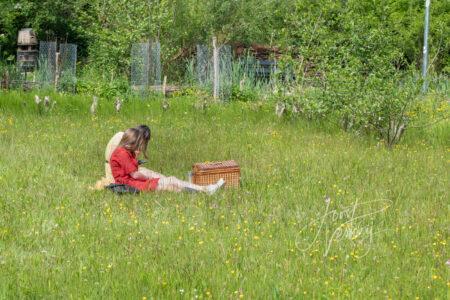 Picknicken in bloemenveldje