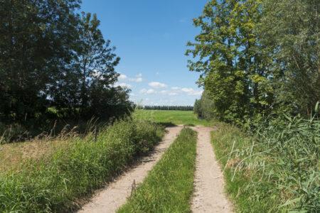 Doorkijkje naar polder achter Wijngaarden