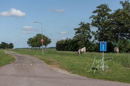 Polderweg Oosteinde in Wijngaarden