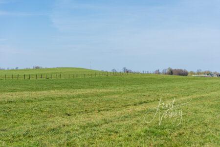 Zanddonk de Schoonenburgse Heuvel