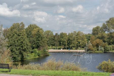 Lammetjeswiel in Alblasserdam