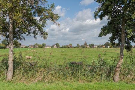 Doorkijkje weilanden bij Ottoland
