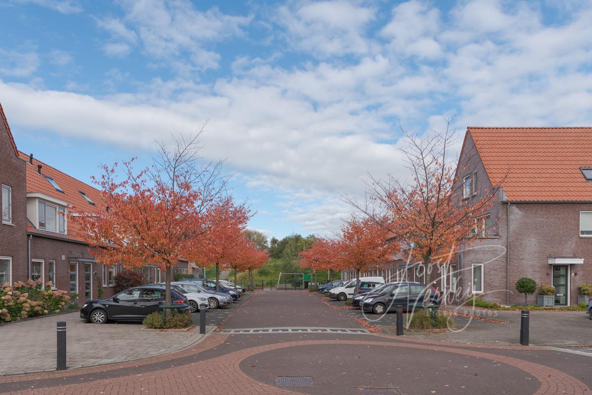 Herfst in Tienhoven