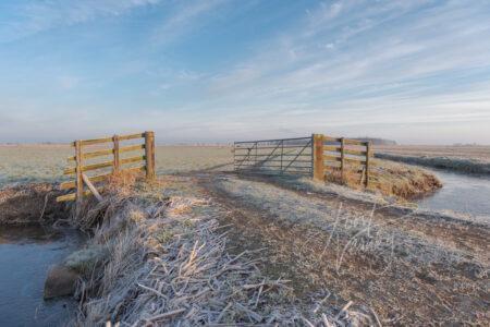 Winters landschap in de Alblasserwaard