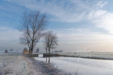 Winterbeeld met bruggetje en bomenpartij