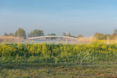 Zijdebrug in warm ochtendlicht