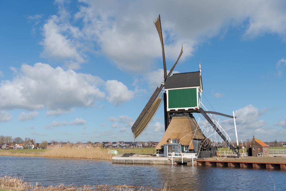 Gelkenes molen in Groot-Ammers