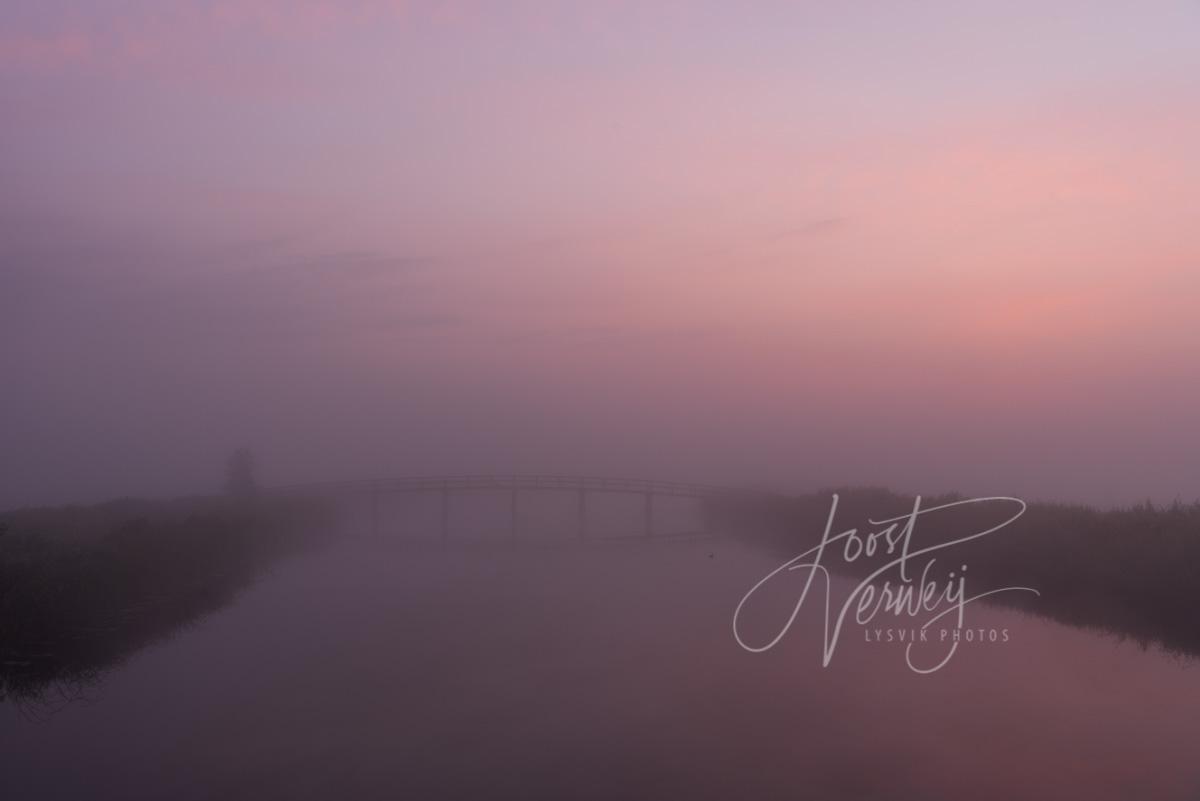 Kleurrijke mistige zonsopkomst
