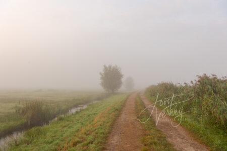 Mist in de Donkse Laagten