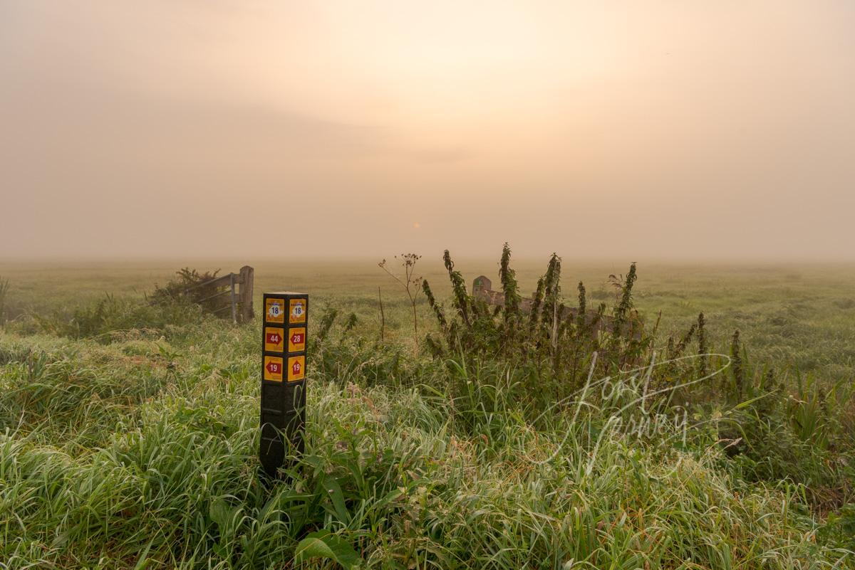 Routeaanduiding wandelnetwerk in mistig polderlandschap