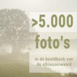 5.000 foto's
